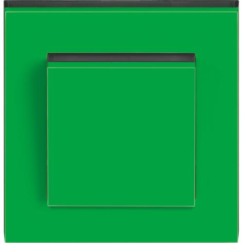 ABB Levit Зеленый/Дымчатый