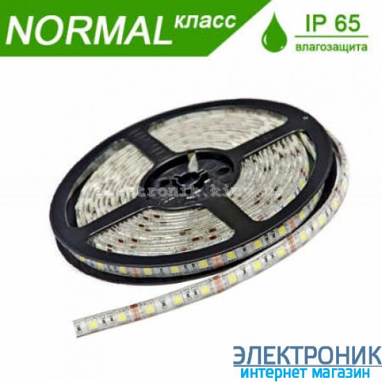 Светодиодная LED лента в силиконе (холодный свет) 4.8 вт на метр (бабина 5 метров)