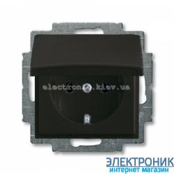 Розетка SCHUKO с крышкой ABB Basic 55 шато черный