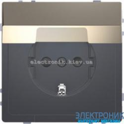 Розетка 1-ая электрическая , с заземлением, крышкой IР44, влагозащищенная, цвет Никель, D-Life