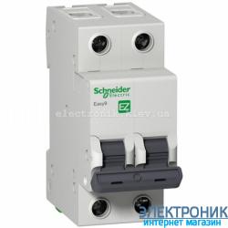 Автоматический выключатель Schneider-Electric Easy9 2P 6A C
